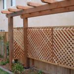 Arbor Decks 11